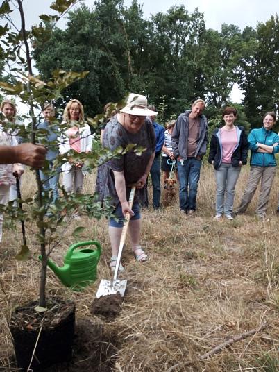 Frau Brokke pflanzt ein Bäumchen©Oberschule Steimbke