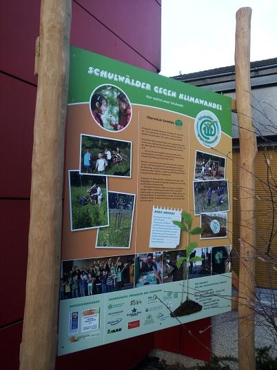 Schulwälder Schild mit Baum©Oberschule Steimbke